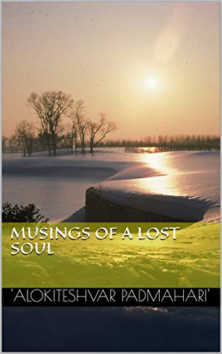 Musings of a Lost Soul